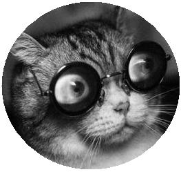 cat_glasses
